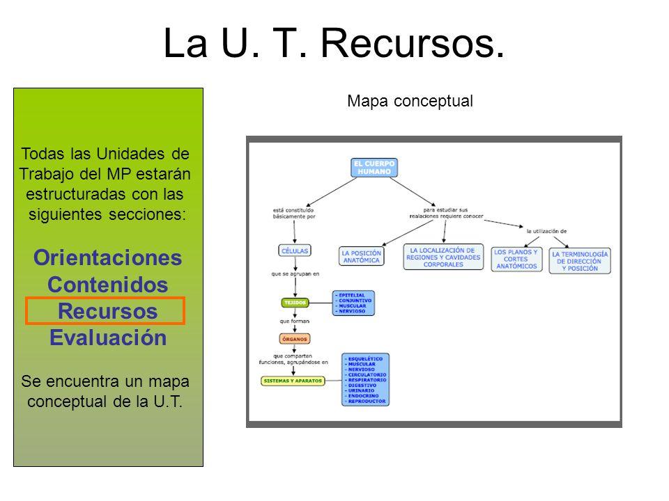 La U. T. Recursos. Todas las Unidades de Trabajo del MP estarán estructuradas con las siguientes secciones: Orientaciones Contenidos Recursos Evaluaci