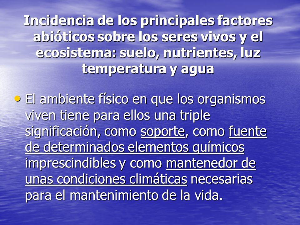 Incidencia de los principales factores abióticos sobre los seres vivos y el ecosistema: suelo, nutrientes, luz temperatura y agua El ambiente físico e