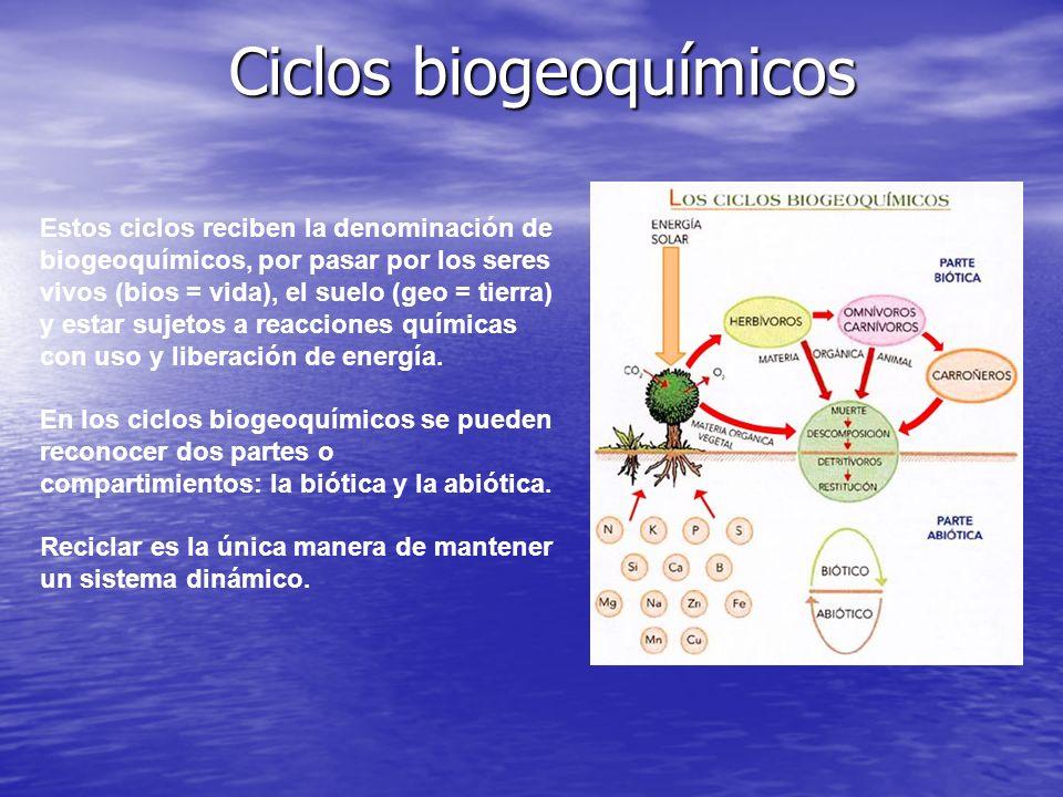 Ciclos biogeoquímicos Estos ciclos reciben la denominación de biogeoquímicos, por pasar por los seres vivos (bios = vida), el suelo (geo = tierra) y e
