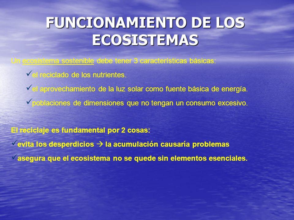 Un ecosistema sostenible debe tener 3 características básicas: el reciclado de los nutrientes. el aprovechamiento de la luz solar como fuente básica d