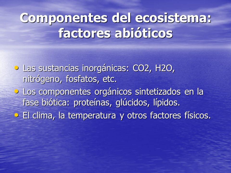 Componentes del ecosistema: factores abióticos Las sustancias inorgánicas: CO2, H2O, nitrógeno, fosfatos, etc. Las sustancias inorgánicas: CO2, H2O, n
