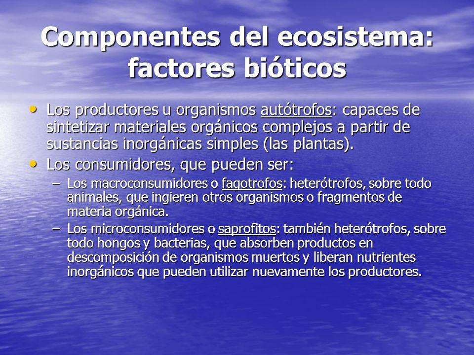 Componentes del ecosistema: factores bióticos Los productores u organismos autótrofos: capaces de sintetizar materiales orgánicos complejos a partir d