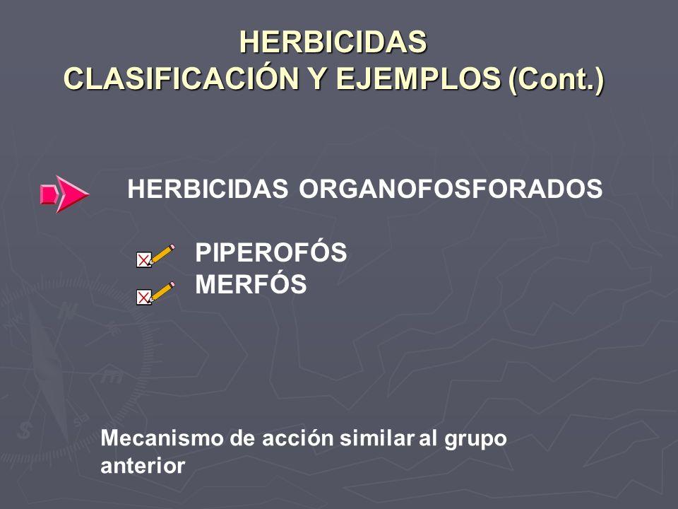 HERBICIDAS CLASIFICACIÓN Y EJEMPLOS (Cont.) HERBICIDAS ORGANOFOSFORADOS PIPEROFÓS MERFÓS Mecanismo de acción similar al grupo anterior
