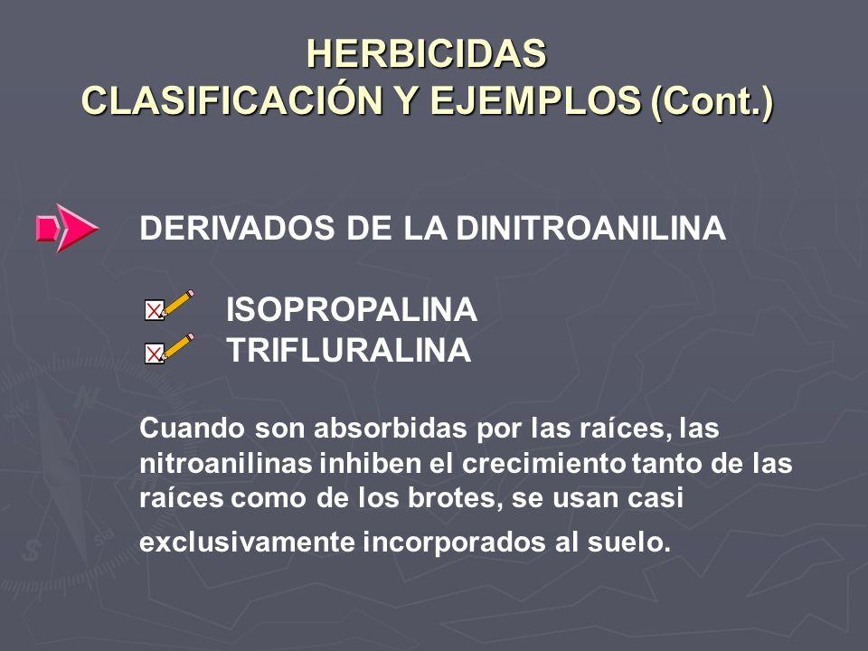 HERBICIDAS CLASIFICACIÓN Y EJEMPLOS (Cont.) DERIVADOS DE LA DINITROANILINA ISOPROPALINA TRIFLURALINA Cuando son absorbidas por las raíces, las nitroan