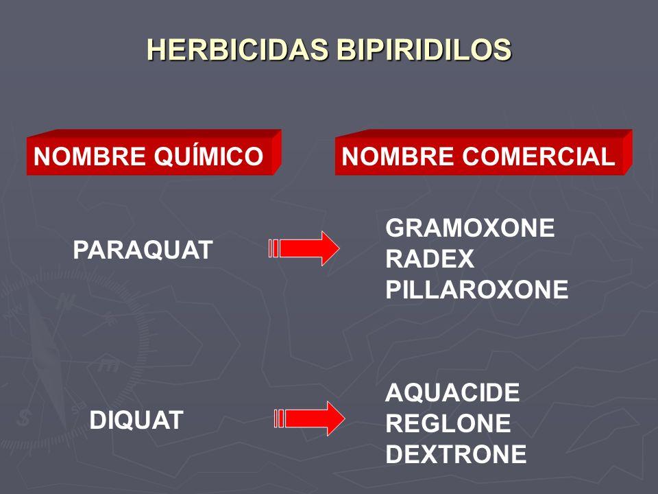 HERBICIDAS BIPIRIDILOS NOMBRE QUÍMICONOMBRE COMERCIAL PARAQUAT GRAMOXONE RADEX PILLAROXONE DIQUAT AQUACIDE REGLONE DEXTRONE