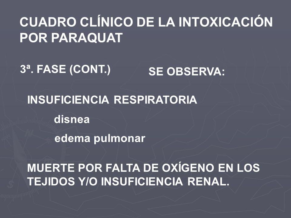 CUADRO CLÍNICO DE LA INTOXICACIÓN POR PARAQUAT 3ª. FASE (CONT.) SE OBSERVA: INSUFICIENCIA RESPIRATORIA disnea edema pulmonar MUERTE POR FALTA DE OXÍGE