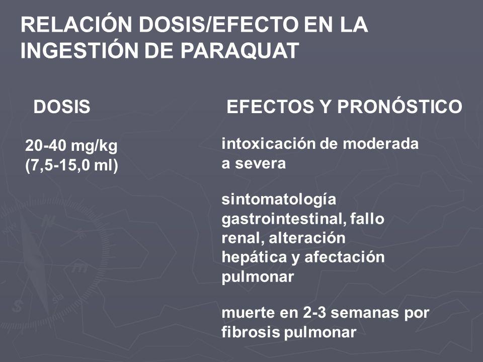 RELACIÓN DOSIS/EFECTO EN LA INGESTIÓN DE PARAQUAT DOSISEFECTOS Y PRONÓSTICO 20-40 mg/kg (7,5-15,0 ml) intoxicación de moderada a severa sintomatología