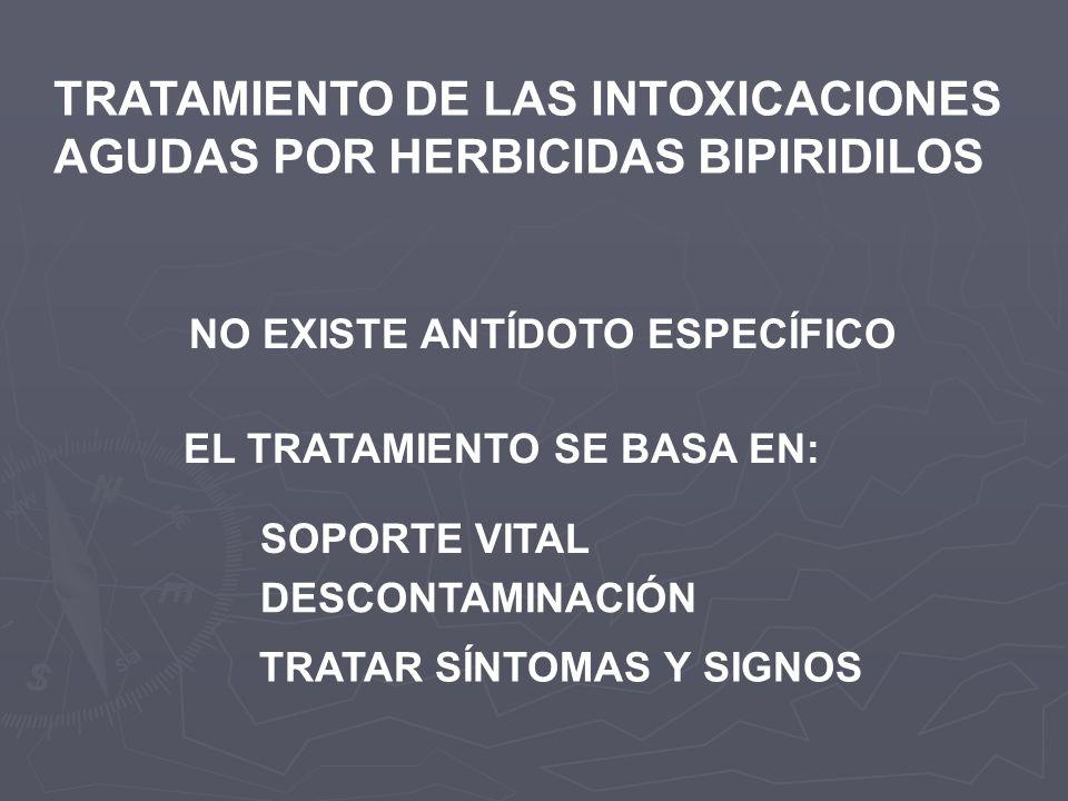 TRATAMIENTO DE LAS INTOXICACIONES AGUDAS POR HERBICIDAS BIPIRIDILOS NO EXISTE ANTÍDOTO ESPECÍFICO EL TRATAMIENTO SE BASA EN: SOPORTE VITAL DESCONTAMIN