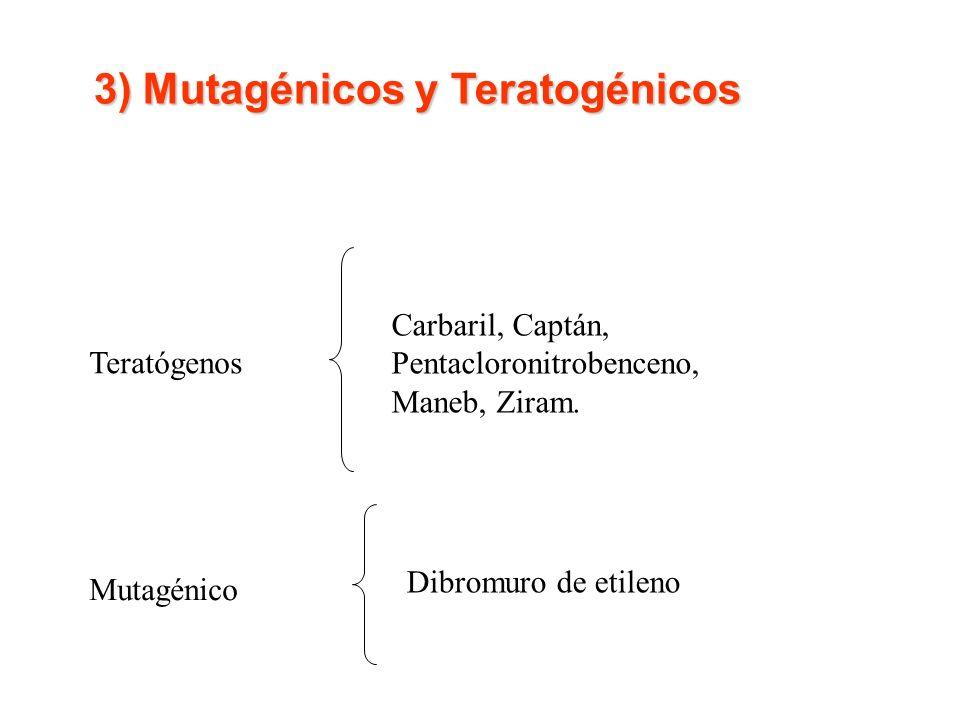 Teratógenos Carbaril, Captán, Pentacloronitrobenceno, Maneb, Ziram. Mutagénico Dibromuro de etileno 3) Mutagénicos y Teratogénicos 3) Mutagénicos y Te
