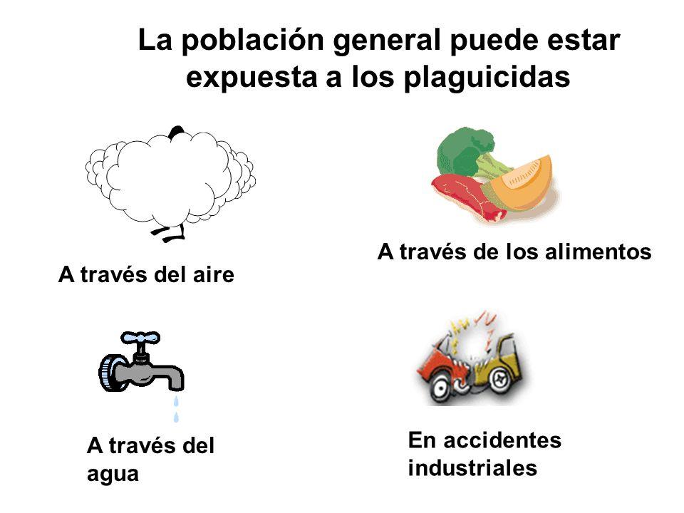 La población general puede estar expuesta a los plaguicidas A través del aire A través del agua A través de los alimentos En accidentes industriales