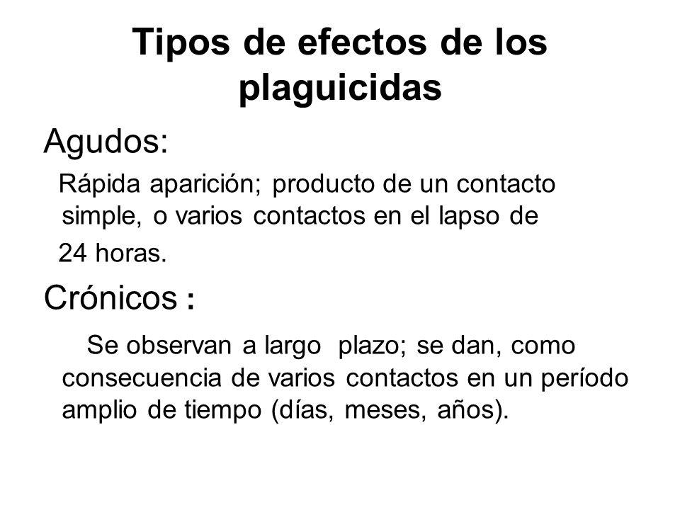 Tipos de efectos de los plaguicidas Agudos: Rápida aparición; producto de un contacto simple, o varios contactos en el lapso de 24 horas. Crónicos : S