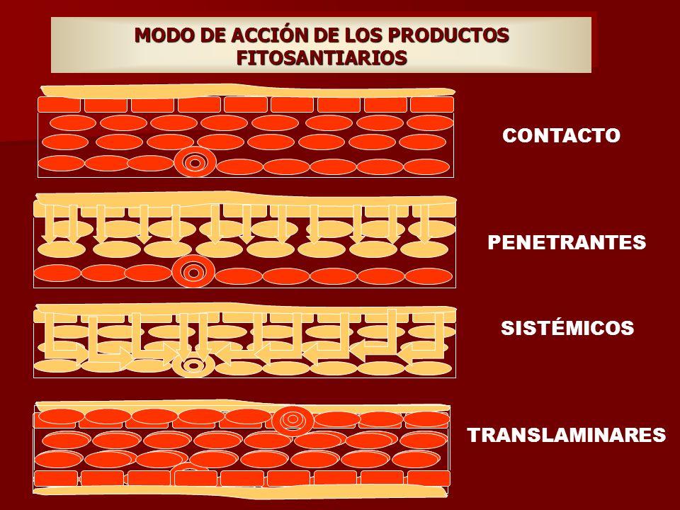 MODO DE ACCIÓN DE LOS PRODUCTOS FITOSANTIARIOS CONTACTO PENETRANTES SISTÉMICOS TRANSLAMINARES
