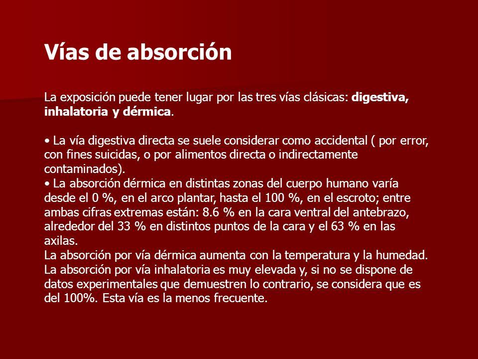Vías de absorción La exposición puede tener lugar por las tres vías clásicas: digestiva, inhalatoria y dérmica. La vía digestiva directa se suele cons