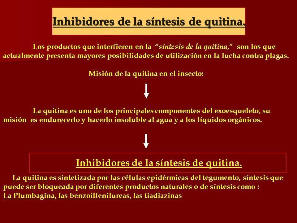 Inhibidores de la síntesis de quitina. Los productos que interfieren en la síntesis de la quitina, son los que actualmente presenta mayores posibilida