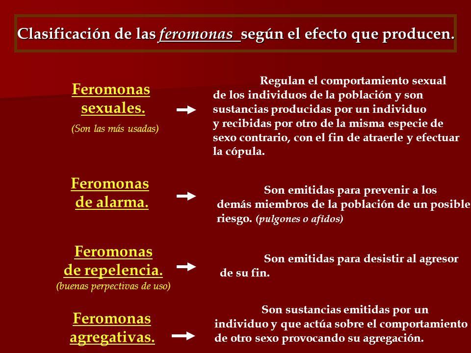 Clasificación de las feromonas según el efecto que producen. Feromonas sexuales. (Son las más usadas) Regulan el comportamiento sexual de los individu