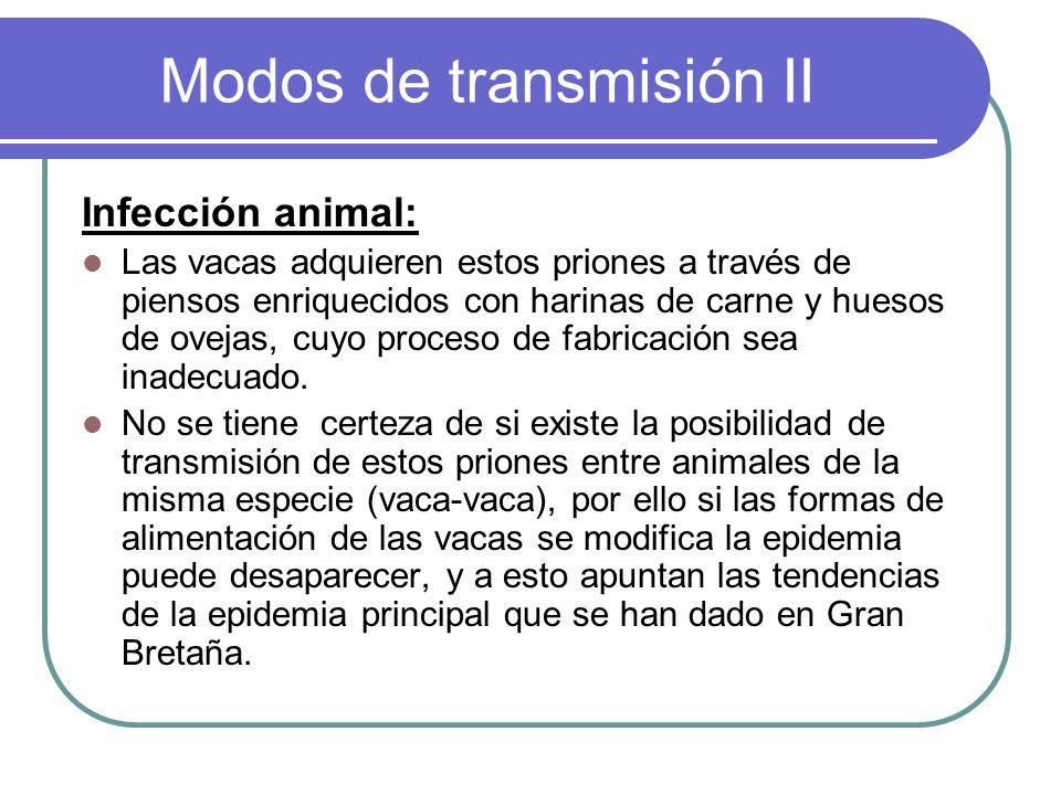 Modos de transmisión II Infección animal: Las vacas adquieren estos priones a través de piensos enriquecidos con harinas de carne y huesos de ovejas,