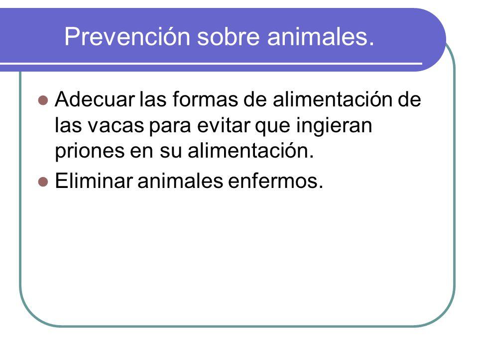 Prevención sobre animales. Adecuar las formas de alimentación de las vacas para evitar que ingieran priones en su alimentación. Eliminar animales enfe