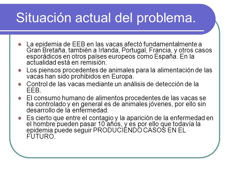 Situación actual del problema. La epidemia de EEB en las vacas afectó fundamentalmente a Gran Bretaña, también a Irlanda, Portugal, Francia, y otros c