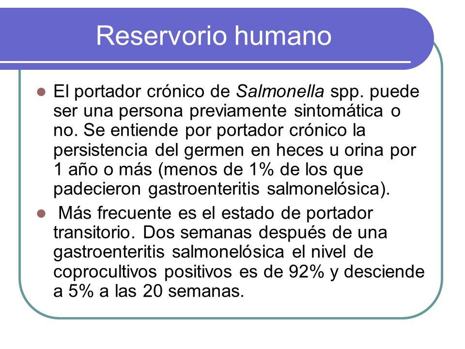 Reservorio humano El portador crónico de Salmonella spp. puede ser una persona previamente sintomática o no. Se entiende por portador crónico la persi