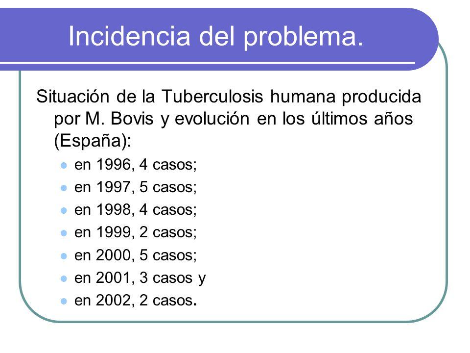 Incidencia del problema. Situación de la Tuberculosis humana producida por M. Bovis y evolución en los últimos años (España): en 1996, 4 casos; en 199