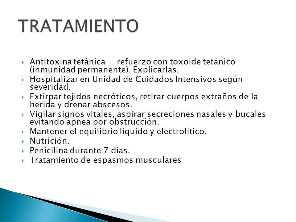 Antitoxina tetánica + refuerzo con toxoide tetánico (inmunidad permanente). Explicarlas. Hospitalizar en Unidad de Cuidados Intensivos según severidad