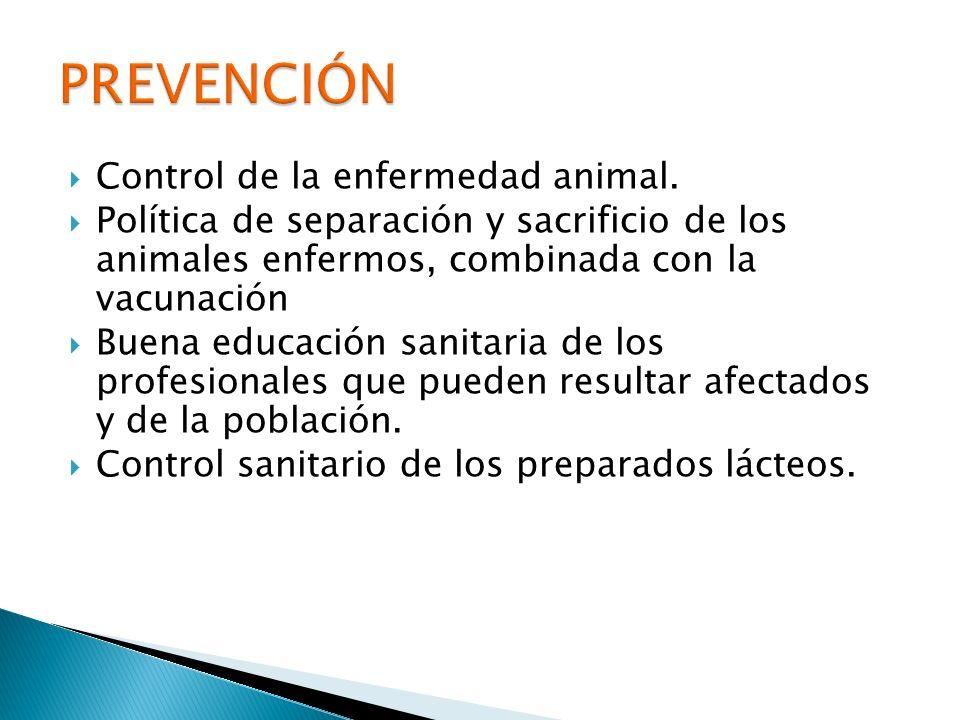 Control de la enfermedad animal. Política de separación y sacrificio de los animales enfermos, combinada con la vacunación Buena educación sanitaria d