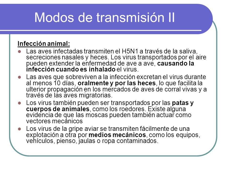 Modos de transmisión II Infección animal: Las aves infectadas transmiten el H5N1 a través de la saliva, secreciones nasales y heces. Los virus transpo