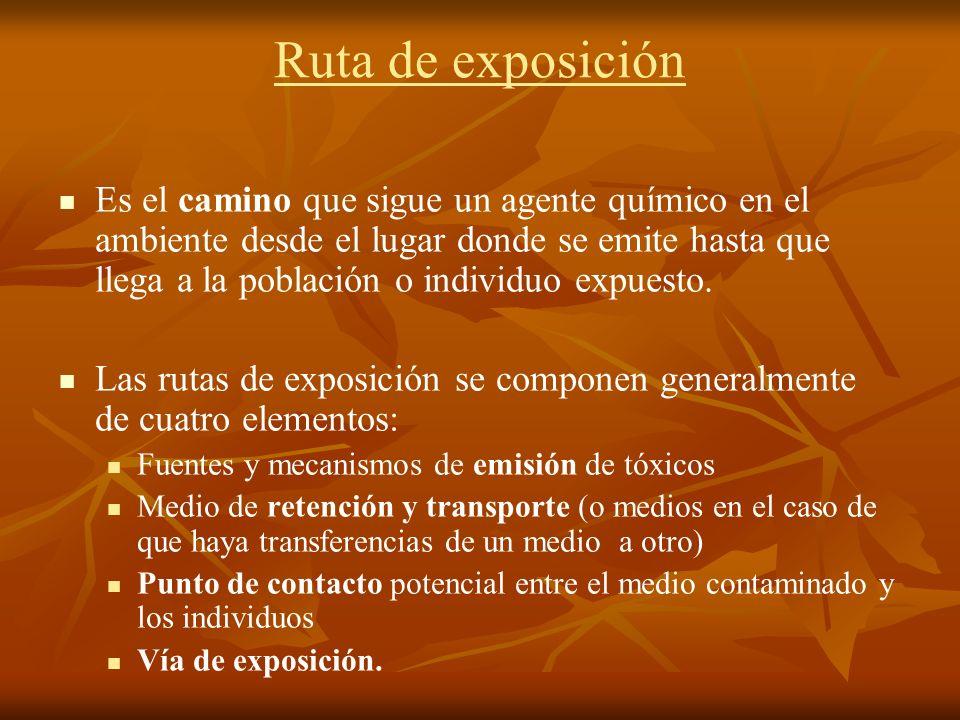Ruta de exposición Es el camino que sigue un agente químico en el ambiente desde el lugar donde se emite hasta que llega a la población o individuo ex