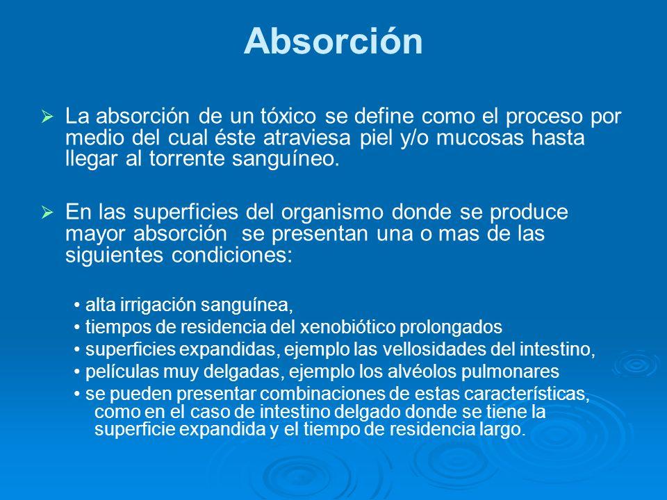 Absorción La absorción de un tóxico se define como el proceso por medio del cual éste atraviesa piel y/o mucosas hasta llegar al torrente sanguíneo. E