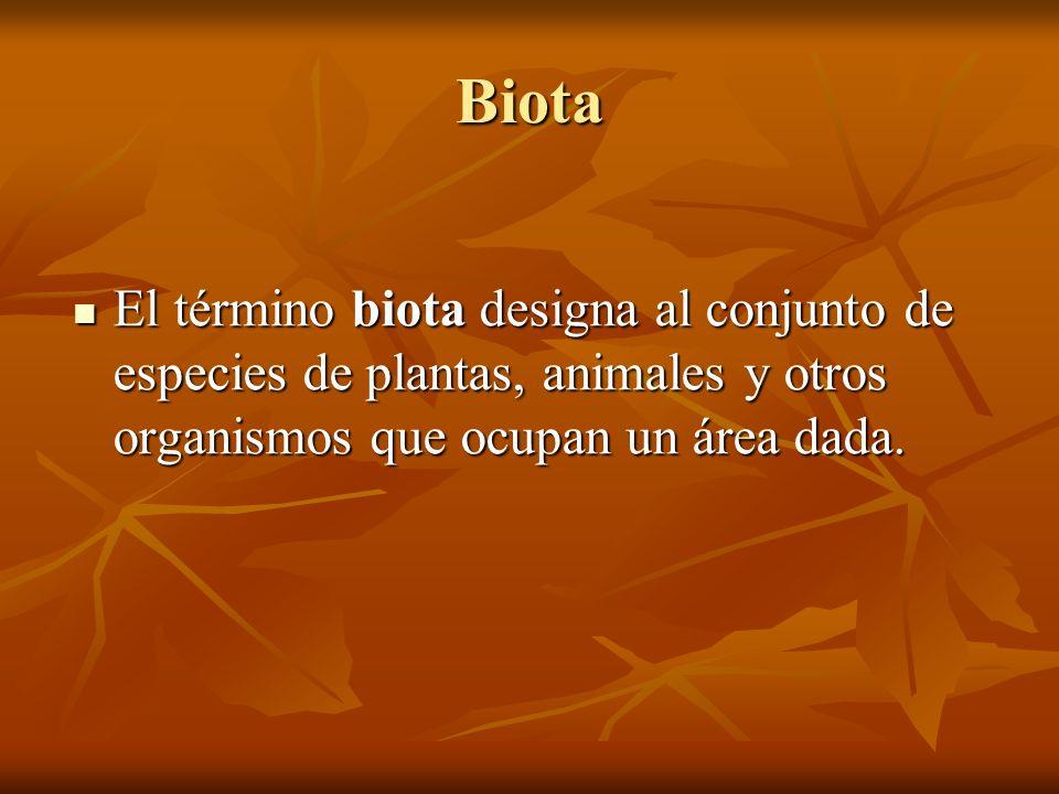 Biota El término biota designa al conjunto de especies de plantas, animales y otros organismos que ocupan un área dada. El término biota designa al co
