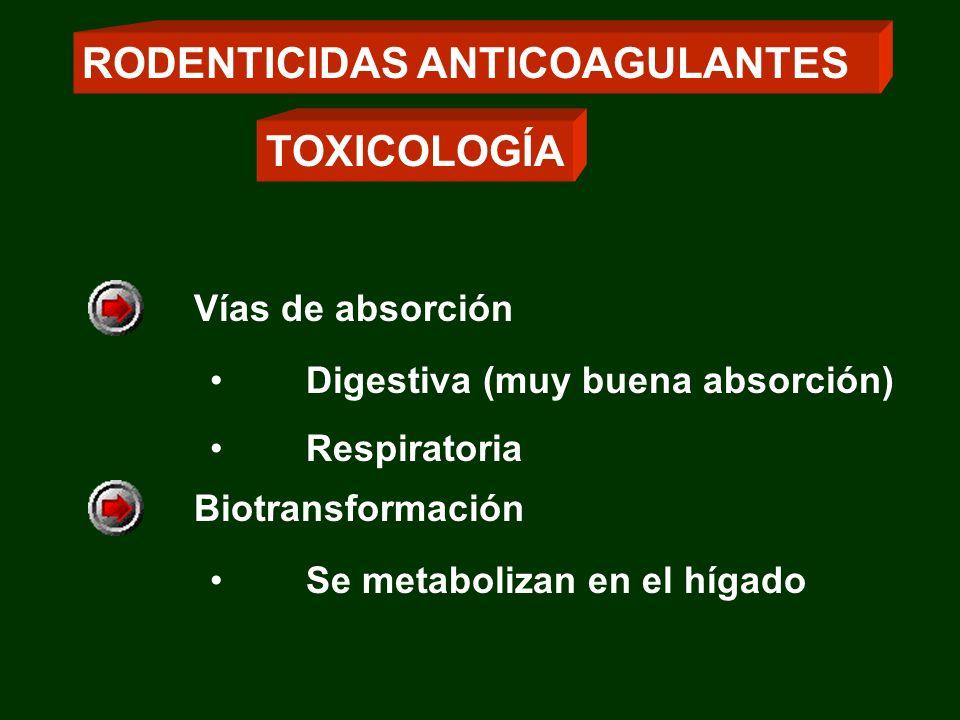 Vías de absorción Digestiva (muy buena absorción) Respiratoria Biotransformación Se metabolizan en el hígado RODENTICIDAS ANTICOAGULANTES TOXICOLOGÍA