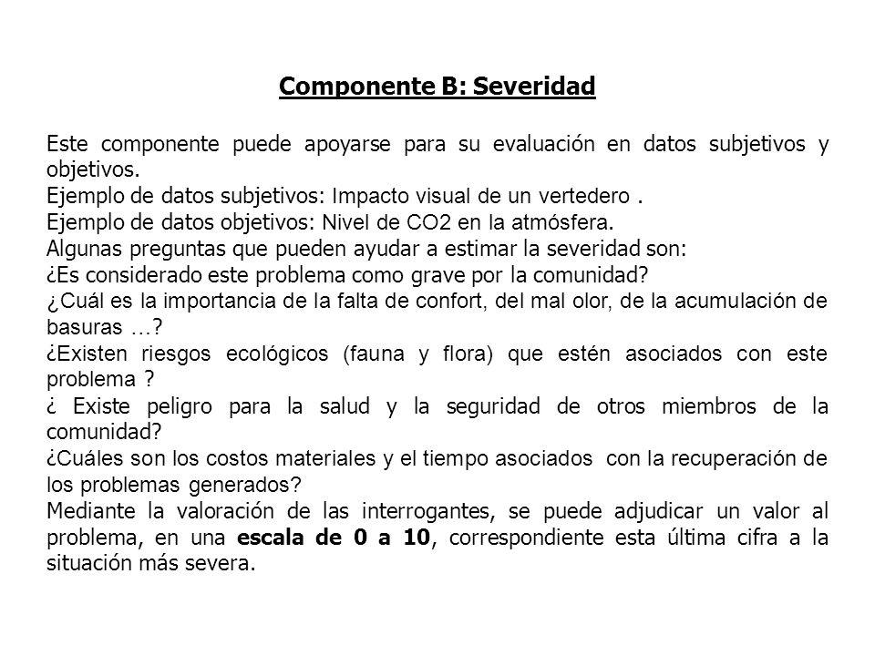 Componente B: Severidad Este componente puede apoyarse para su evaluación en datos subjetivos y objetivos. Ejemplo de datos subjetivos: Impacto visual
