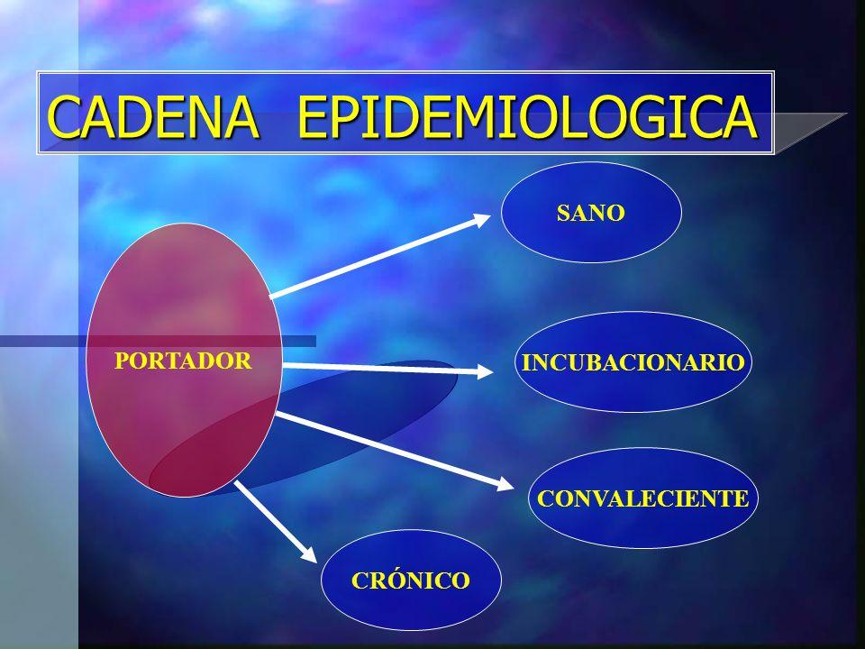 CADENA EPIDEMIOLOGICA PORTADOR SANO CONVALECIENTE INCUBACIONARIO CRÓNICO