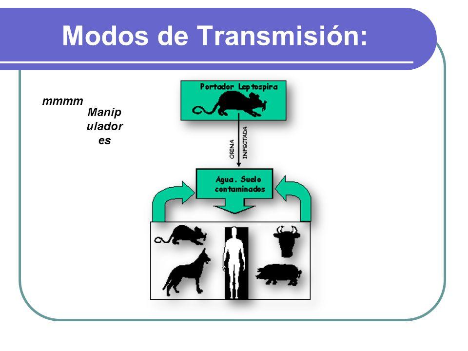 Modos de Transmisión: Manip ulador es mmmm