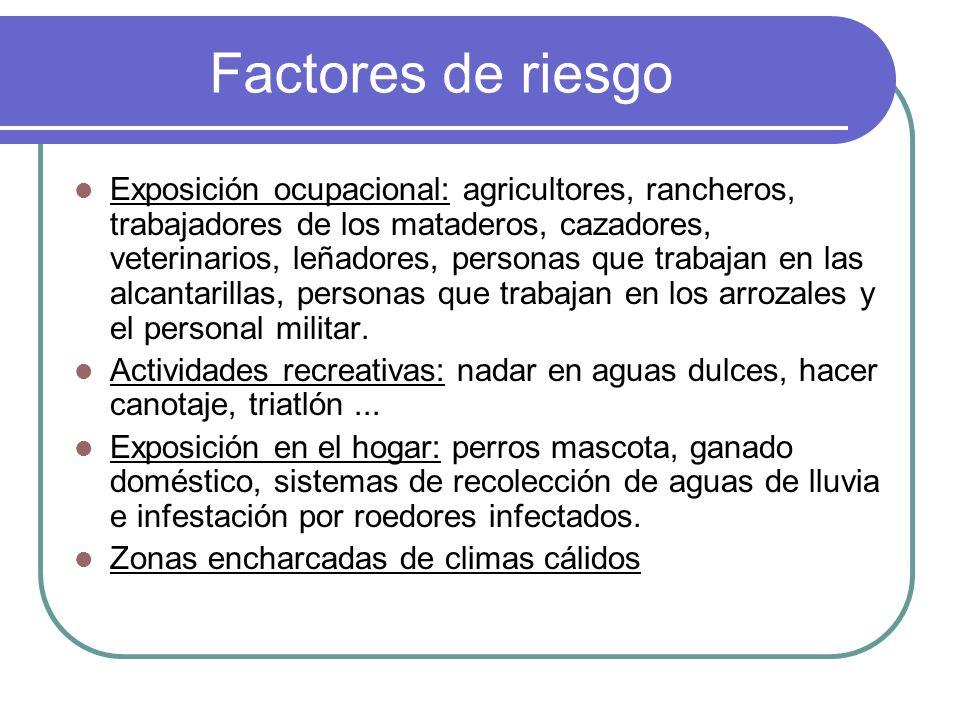 Factores de riesgo Exposición ocupacional: agricultores, rancheros, trabajadores de los mataderos, cazadores, veterinarios, leñadores, personas que tr