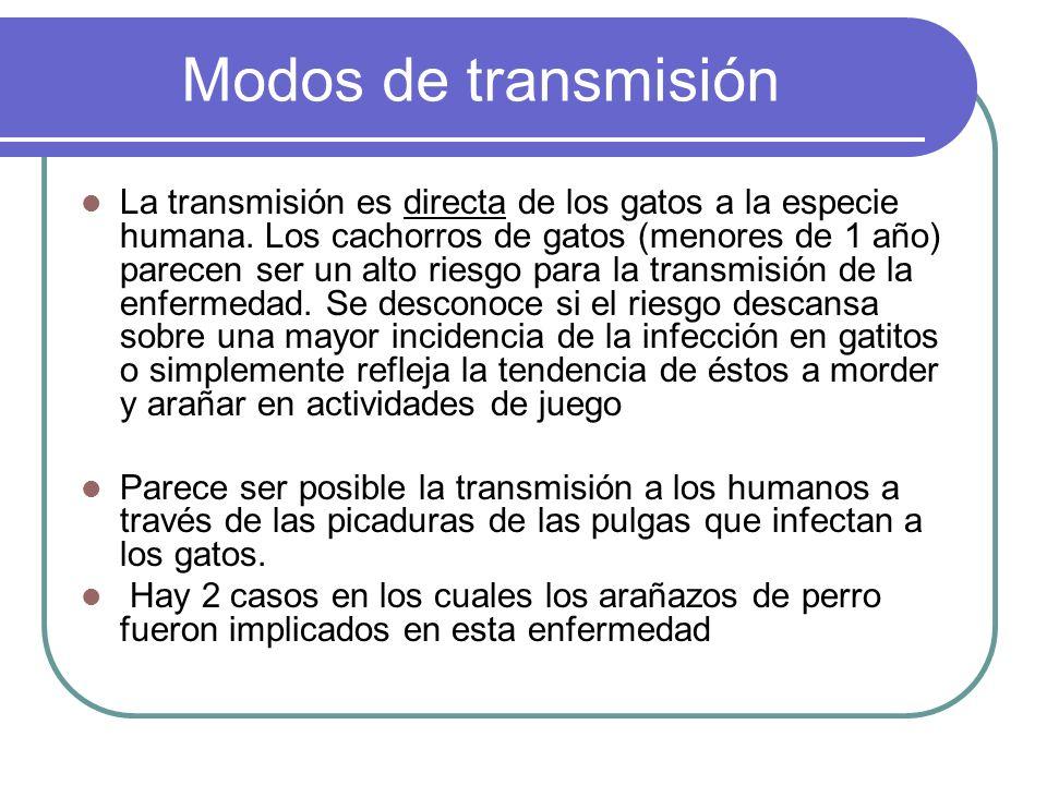 Modos de transmisión La transmisión es directa de los gatos a la especie humana. Los cachorros de gatos (menores de 1 año) parecen ser un alto riesgo