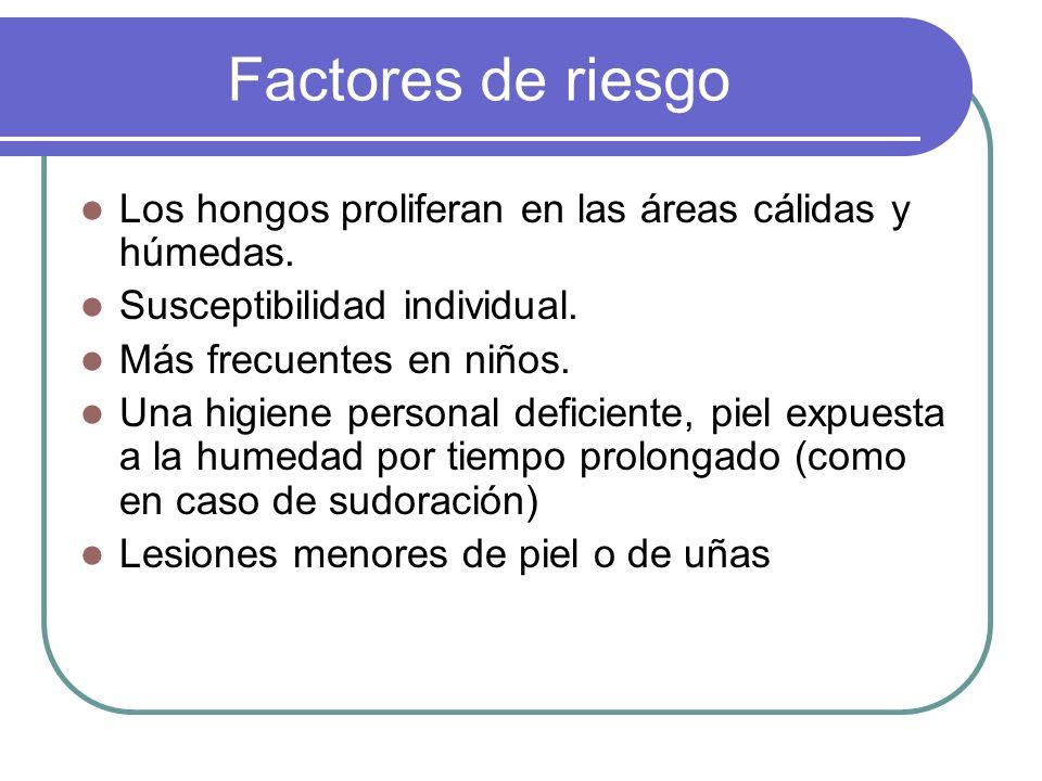 Factores de riesgo Los hongos proliferan en las áreas cálidas y húmedas. Susceptibilidad individual. Más frecuentes en niños. Una higiene personal def