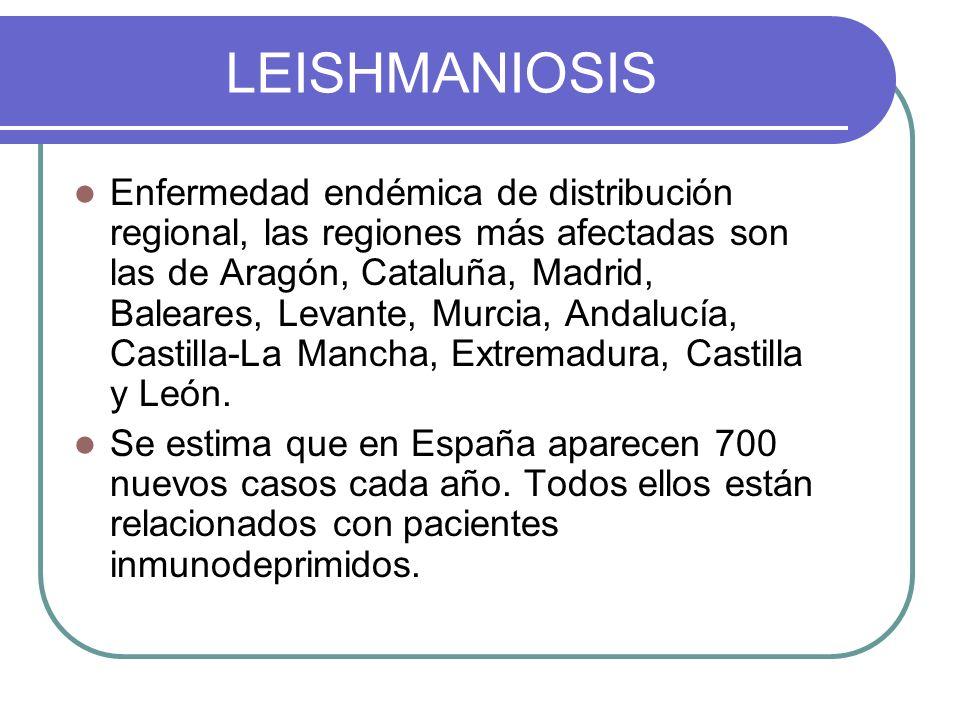 LEISHMANIOSIS Enfermedad endémica de distribución regional, las regiones más afectadas son las de Aragón, Cataluña, Madrid, Baleares, Levante, Murcia,