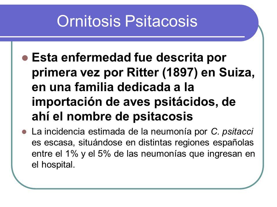 Ornitosis Psitacosis Esta enfermedad fue descrita por primera vez por Ritter (1897) en Suiza, en una familia dedicada a la importación de aves psitáci