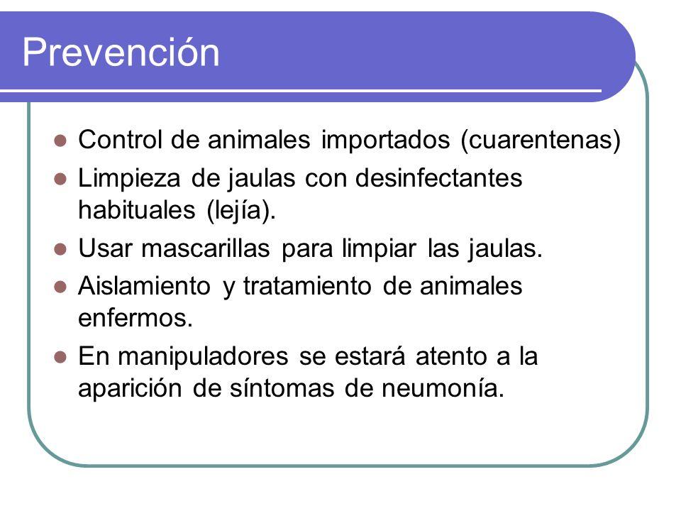 Prevención Control de animales importados (cuarentenas) Limpieza de jaulas con desinfectantes habituales (lejía). Usar mascarillas para limpiar las ja