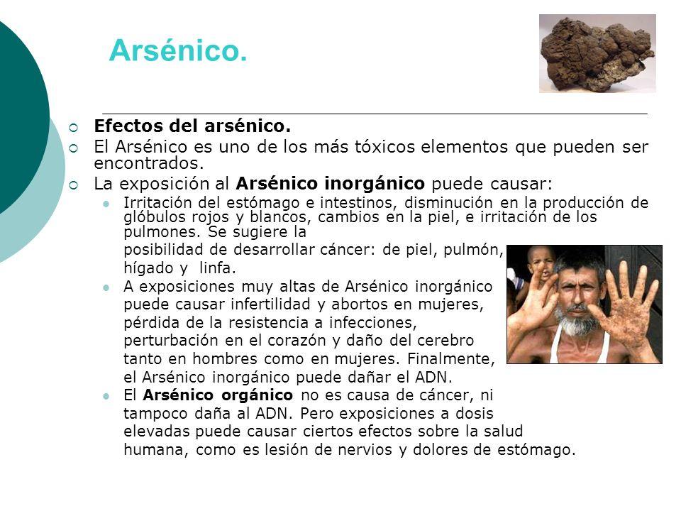 Arsénico. Efectos del arsénico. El Arsénico es uno de los más tóxicos elementos que pueden ser encontrados. La exposición al Arsénico inorgánico puede