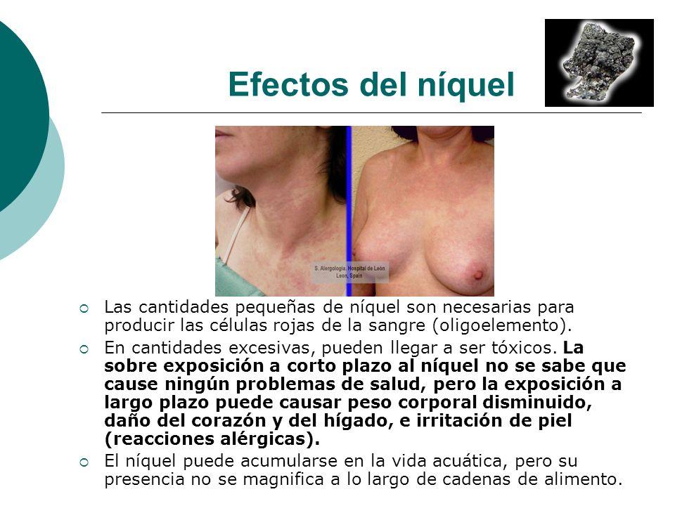Efectos del níquel Las cantidades pequeñas de níquel son necesarias para producir las células rojas de la sangre (oligoelemento). En cantidades excesi