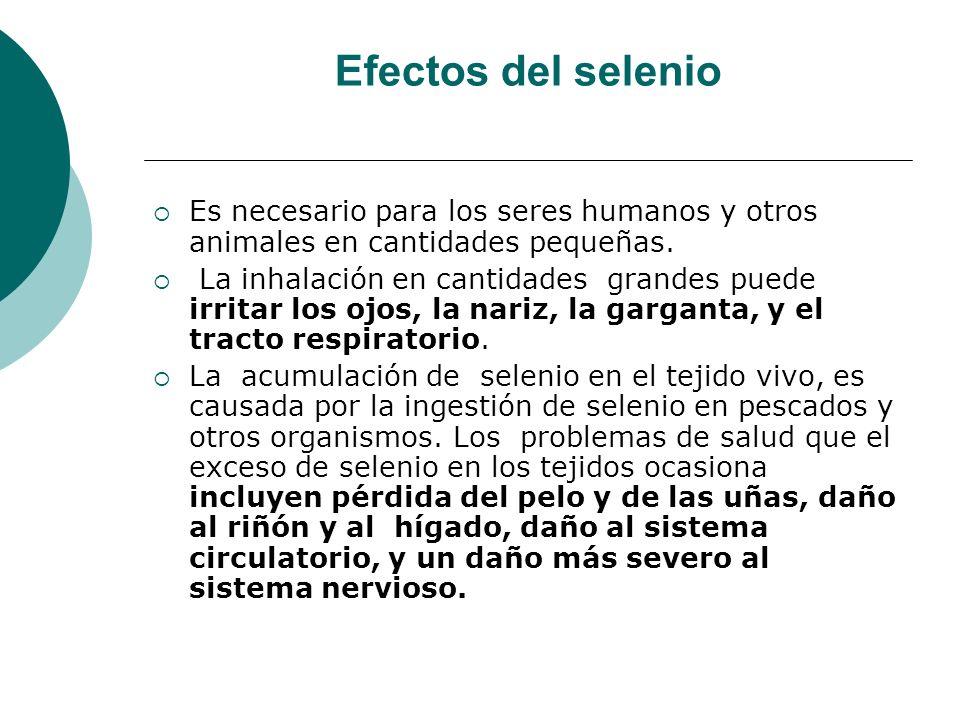 Efectos del selenio Es necesario para los seres humanos y otros animales en cantidades pequeñas. La inhalación en cantidades grandes puede irritar los