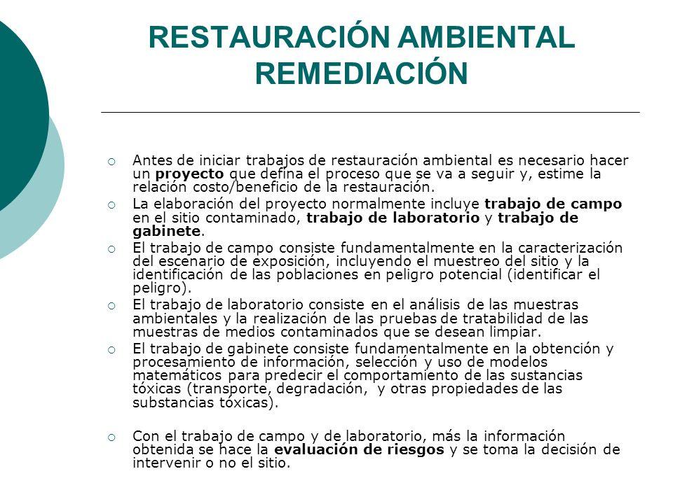RESTAURACIÓN AMBIENTAL REMEDIACIÓN Antes de iniciar trabajos de restauración ambiental es necesario hacer un proyecto que defina el proceso que se va