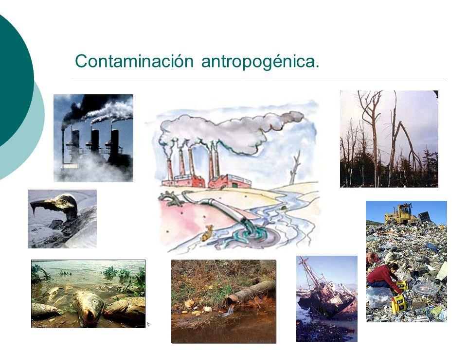 Contaminantes primarios Entendemos por contaminantes primarios aquellas sustancias contaminantes que son vertidas directamente al medio ambiente.
