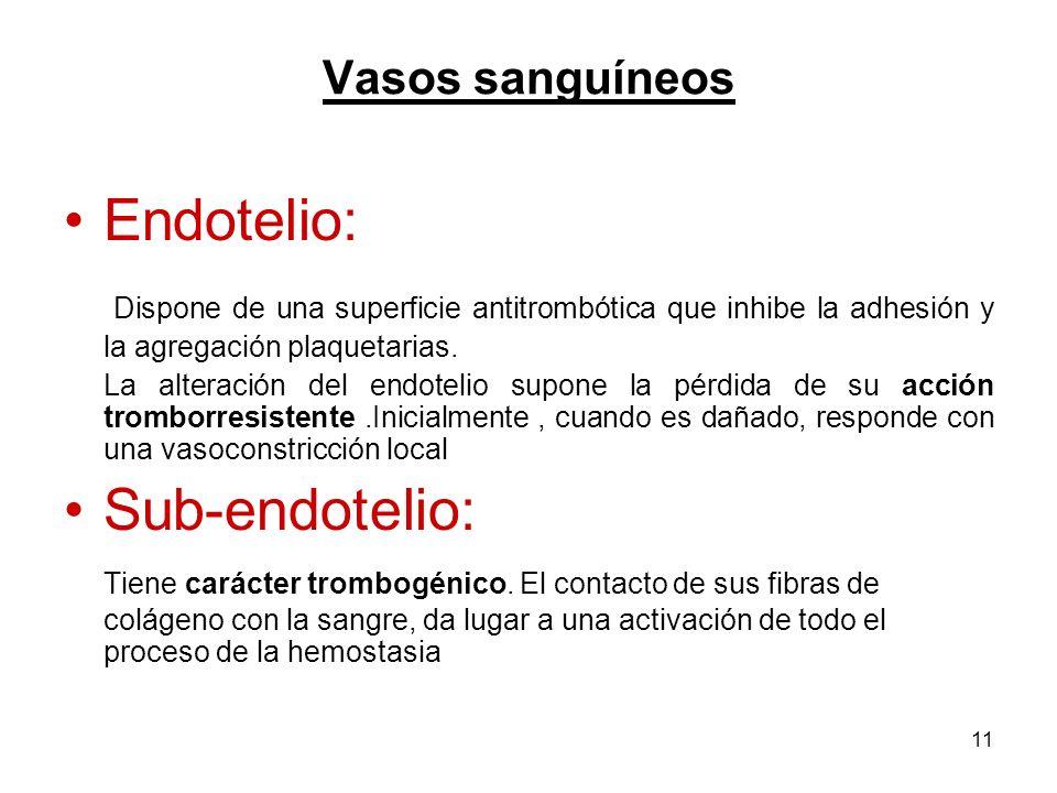 11 Vasos sanguíneos Endotelio: Dispone de una superficie antitrombótica que inhibe la adhesión y la agregación plaquetarias. La alteración del endotel