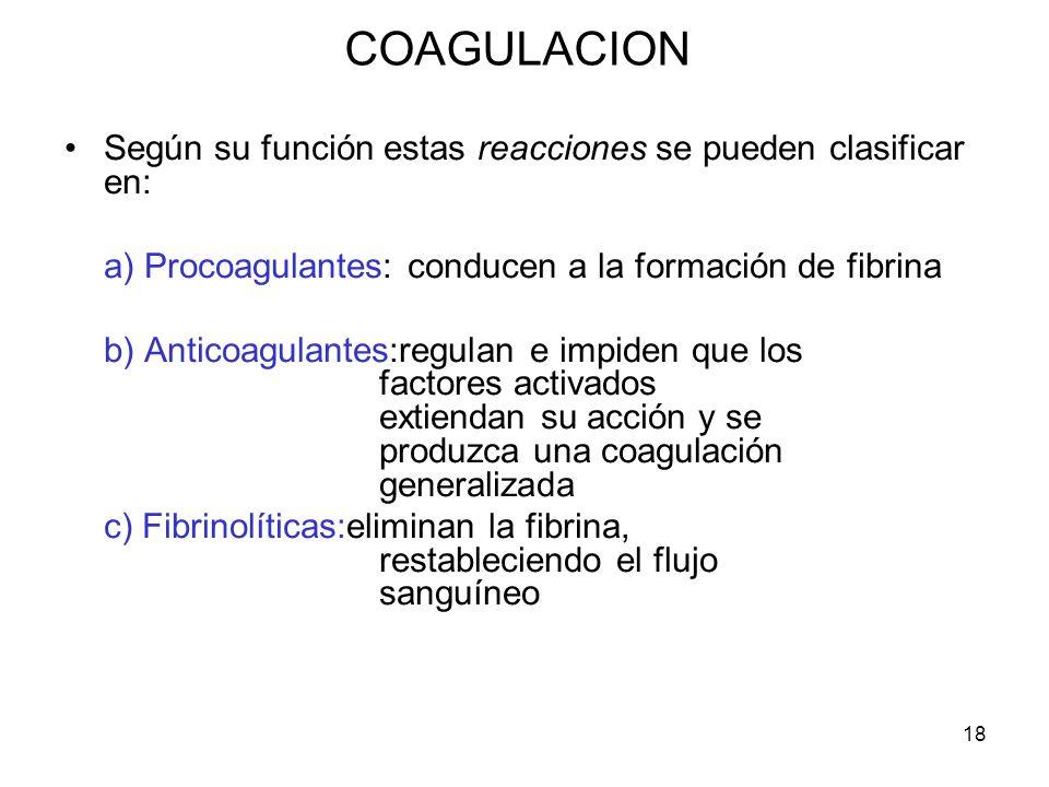 18 COAGULACION Según su función estas reacciones se pueden clasificar en: a) Procoagulantes: conducen a la formación de fibrina b) Anticoagulantes:reg