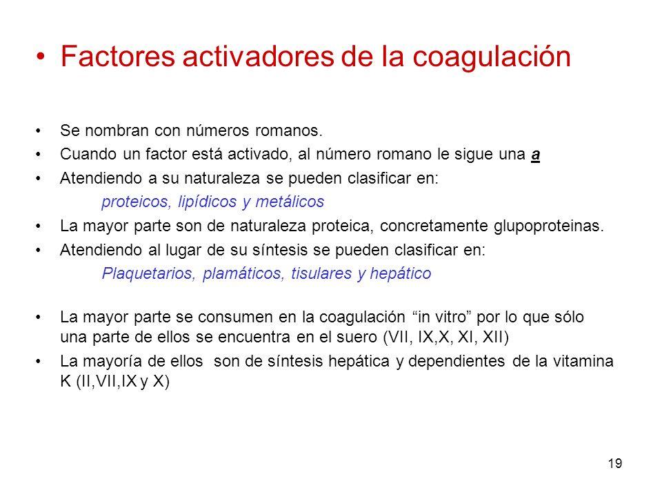 19 Factores activadores de la coagulación Se nombran con números romanos. Cuando un factor está activado, al número romano le sigue una a Atendiendo a