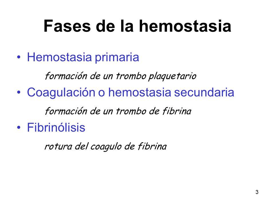 3 Fases de la hemostasia Hemostasia primaria formación de un trombo plaquetario Coagulación o hemostasia secundaria formación de un trombo de fibrina