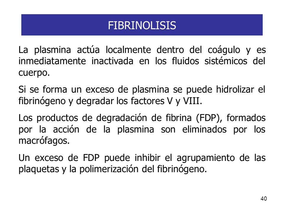 40 La plasmina actúa localmente dentro del coágulo y es inmediatamente inactivada en los fluidos sistémicos del cuerpo. Si se forma un exceso de plasm